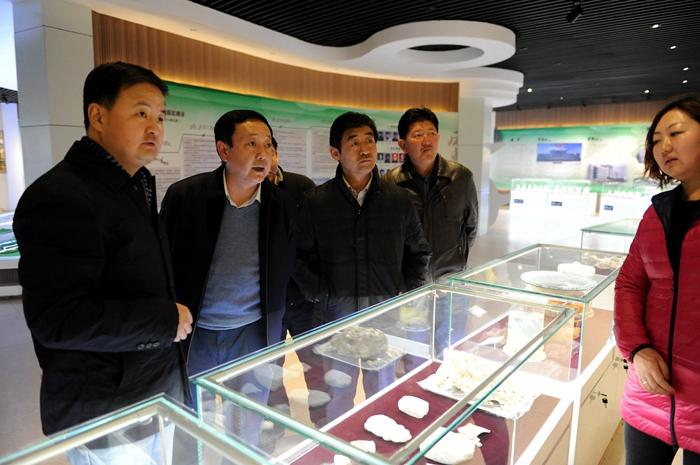 欢迎光临青海诺木洪农场枸杞网!